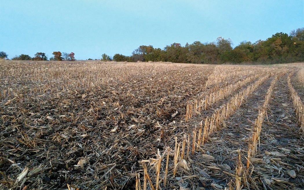 residue-cover-pinned-vertical-tillage